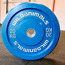 Load image into Gallery viewer, Brand New Wild Animals 2 x 20kg Coloured Olympic Bumper Plates
