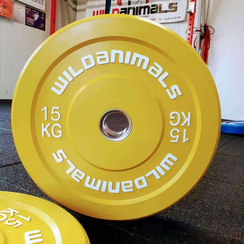 Brand New Wild Animals 2 x 15kg Coloured Olympic Bumper Plates