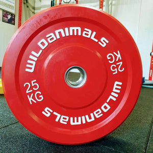 Brand New Wild Animals 2 x 25kg Coloured Olympic Bumper Plates