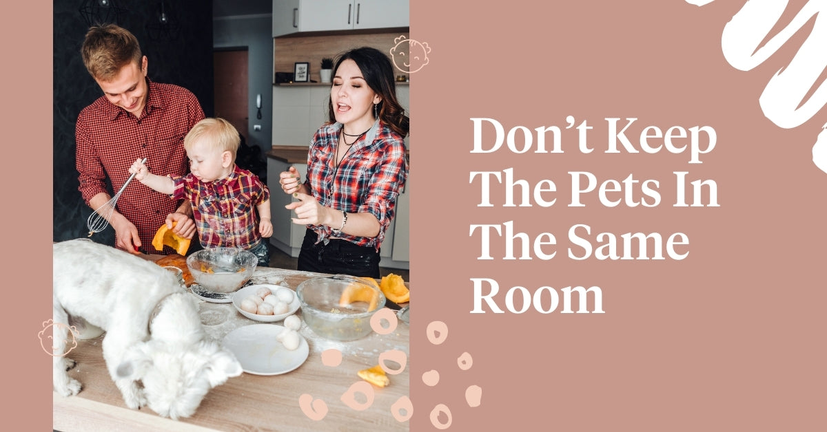 Don't keep the pets in same room