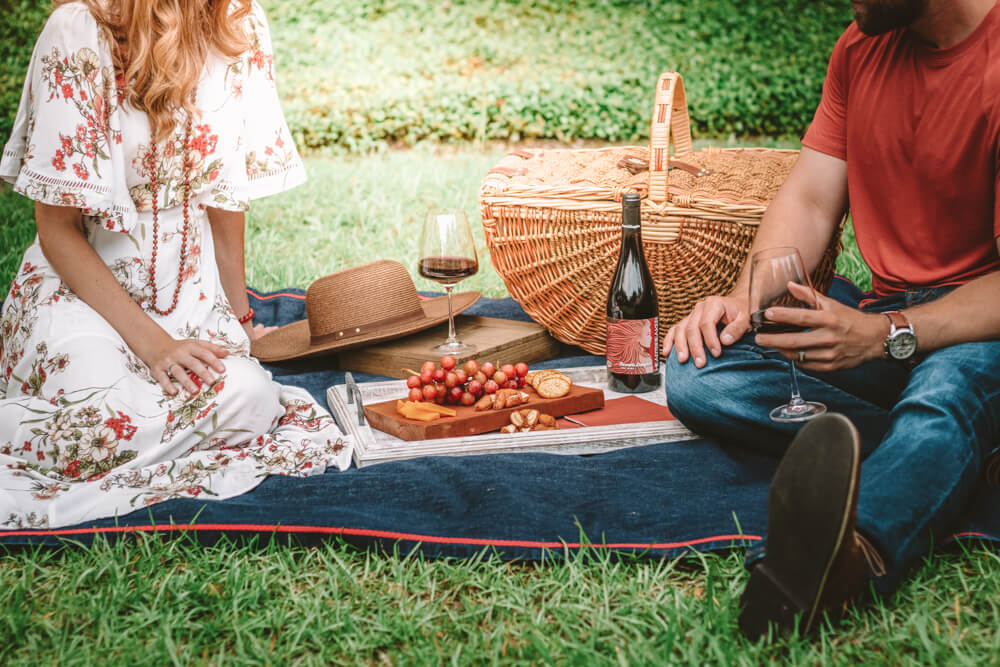 Picnic in the park for Perfect Vegan Valentine's Day Gifts and Date Ideas