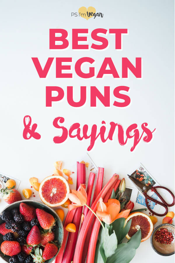 The most funny vegan sayings for birthday cards or captions. Plus cute vegan puns and funny vegan quotes to make your day. Put the best vegan sayings on a shirt or do whatever you want with them! #vegan #pun