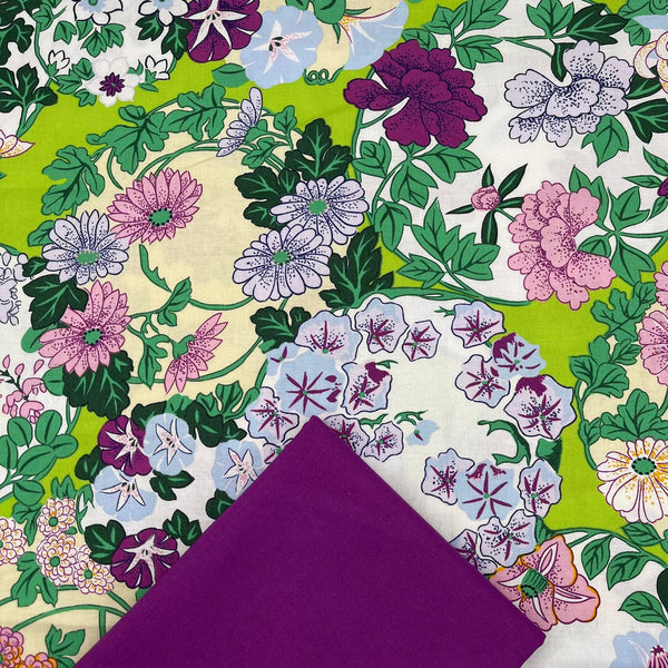 Half Metre Heaven: Philip Jacobs Snow Leopard 'Torimoto' with Magenta