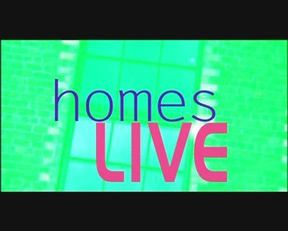 The DIY School on Homes Live