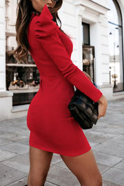 Bubble Sleeve Slim Long Sleeve Mini Dress