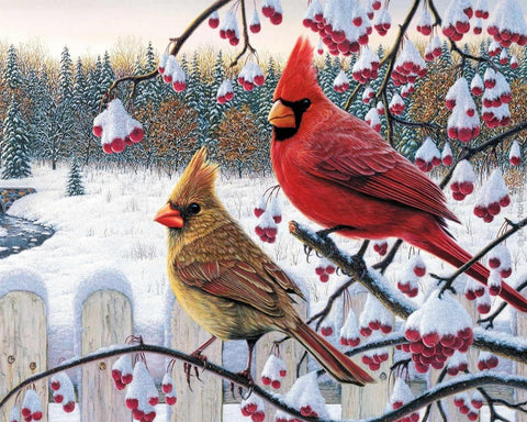 Winter Season Red Cardinal Birds Christmas Diamond Painting Art