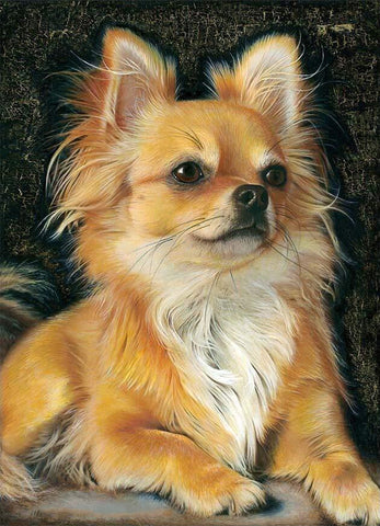 Beautiful Dog Pet Chihuahua Diamond Painting Art Kits