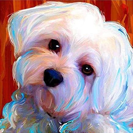 Cute Pet Dog White Maltese Oil Artwork Diamond Painting Art Kits