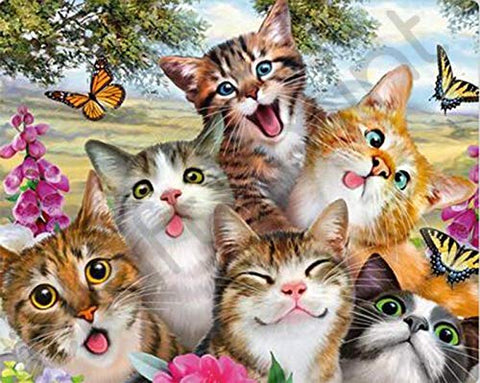 Funny Silly Cat Taking Selfie with Butterfly Diamond Painting Kits