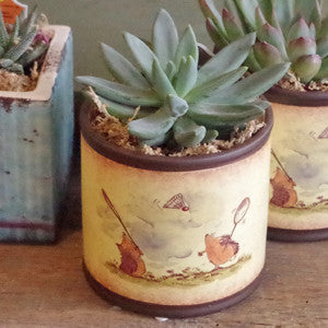 Succulents - Vintage Home Boutique - 3