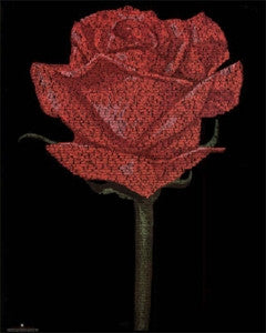 Red Rose Romeo & Juliet Script Poster