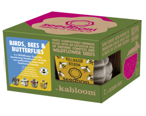 Birds, Bees and Butterflies Seedbom Gift Box - Set of 4 Seedboms