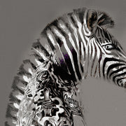Tattooed zebra