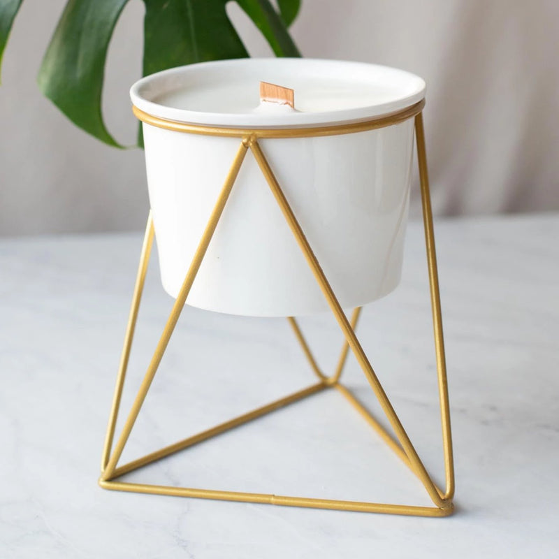 Coconut Wax Candle Stand Planter - Extra Large