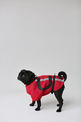Dog Vets and Jackets
