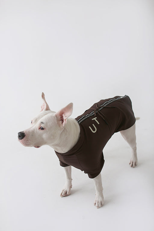 Una Terra Waterproof Vest with Hood & Waterproof Dog Vest
