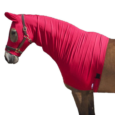 Show Clothing For Horses: Shiny Show Hoods and Rugs
