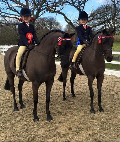 Snuggy Sooty & Janey Bring Home The Ribbons From Their Debut Outing
