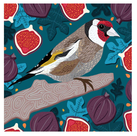 An eco friendly greeting card with vibrant artwork showing a stylised picture of a goldfinch in shades of brown and grey with a red, black and white head and black, yellow and white details on the wings. It is perched on a brown branch surrounded by red open and purple closed figs on a teal blue background