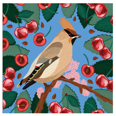 An eco friendly greeting card with vibrant artwork showing a stylised picture of a waxwing in shades of brown with an orange plume and black, yellow and white details on the wings. It is perched on a branch with cherry blossom surrounded by red cherries on a bright blue background