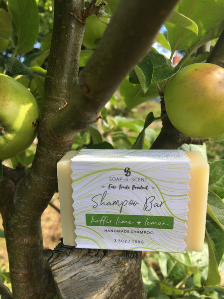 Solid Shampoo Bar - Kaffir Lime and Lemon