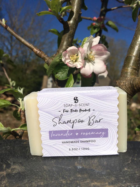 Solid Shampoo Bar - Lavender and Rosemary