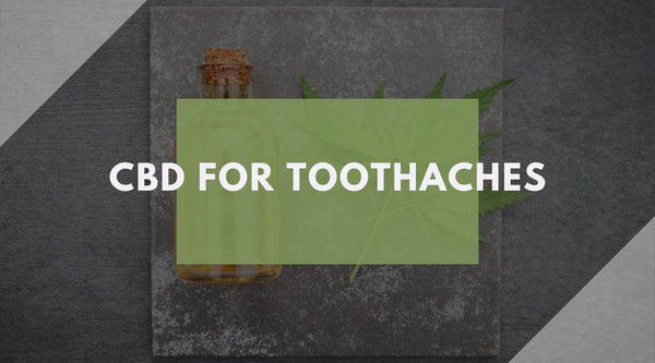 CBD For Toothaches: The Answer You've Been Looking For