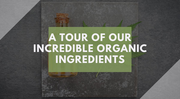 Organic Ingredients CBD Essential Oils