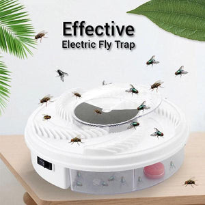 Effective Electric Fly Trap