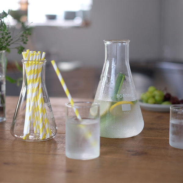 LAB GLASS Wide Flask 500
