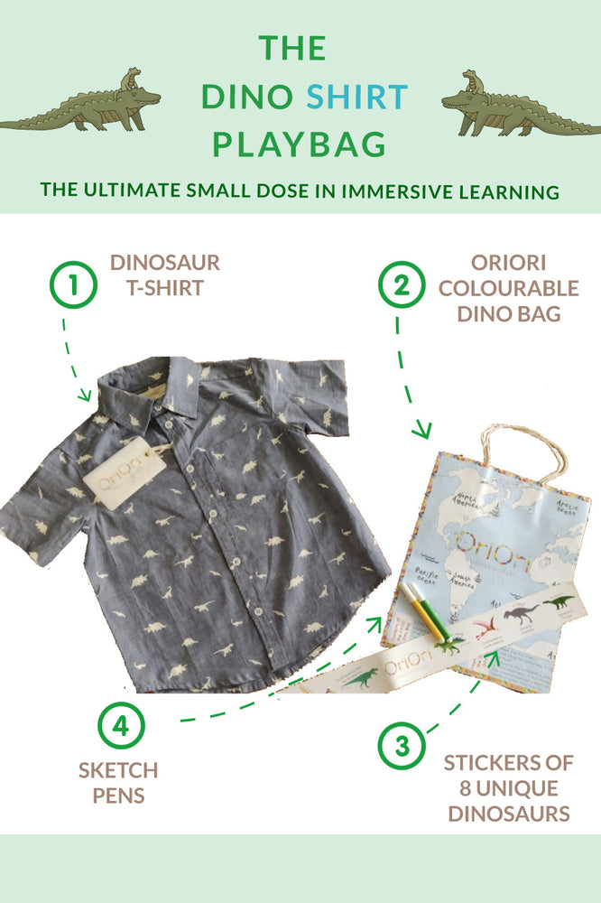 Load image into Gallery viewer, The Dino Shirt – PlayBag<br/>Naturalist Collection