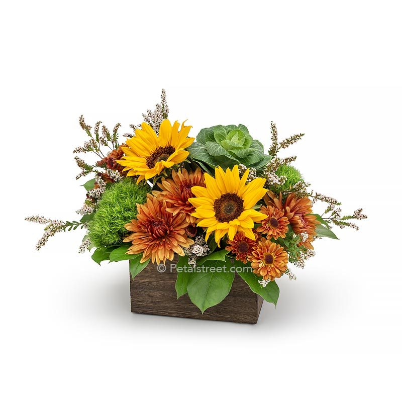 Fall flower arrangement with Sunflowers, Mums, Kale, and Green Trick arranged in a rustic wood box.
