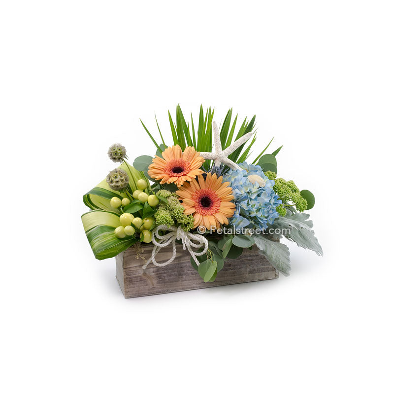 Nautical or coastal theme flower arrangement with shells and starfish, a gorgeous piece by Petal Street Flower Company.