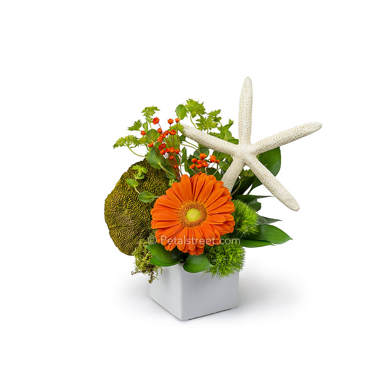 Summer beach flower arrangement in a white cube vase with a large orange Gerbera Daisy, lush greenery, and a starfish accent