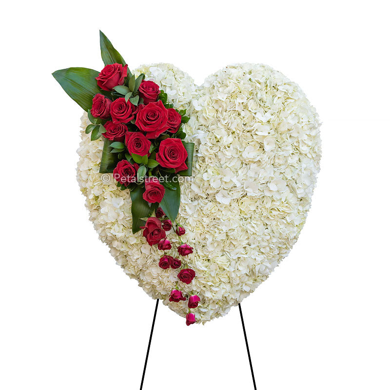 Funeral flowers bleeding heart by Petal Street Flower Company with white Hydrangea base and rich red Roses.