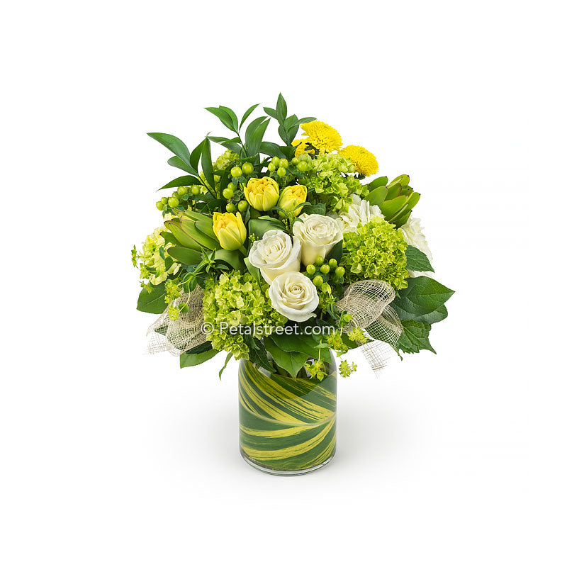 Gorgeous flower delivery in Point Pleasant NJ by Petal Street Flower Company florist, this green and yellow vase arrangement has white Roses, yellow Tulips, green and white Hydrangea, Hypericum Berries, Bupleurum, and a hand-wrapped Ginger leaf accent.