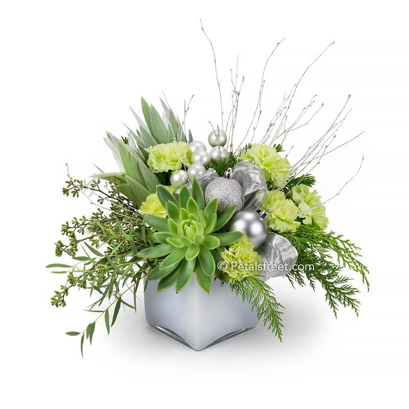 Christmas flower arrangement with green Carnations, green Leucadendron, Cedar, Eucalyptus, Succulents, Birch Sticks, and silver holiday ornament accents arranged in a white cube vase.
