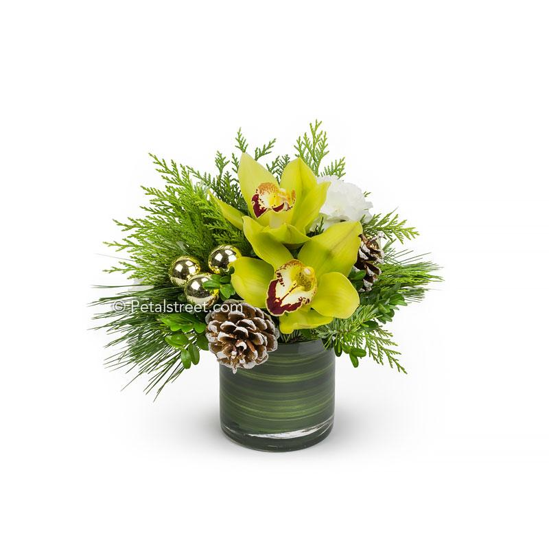 Small vase flower arrangement for Christmas with green Cymbidium Orchids arranged in seasonal greenery with gold ornament and Pine Cone accents.