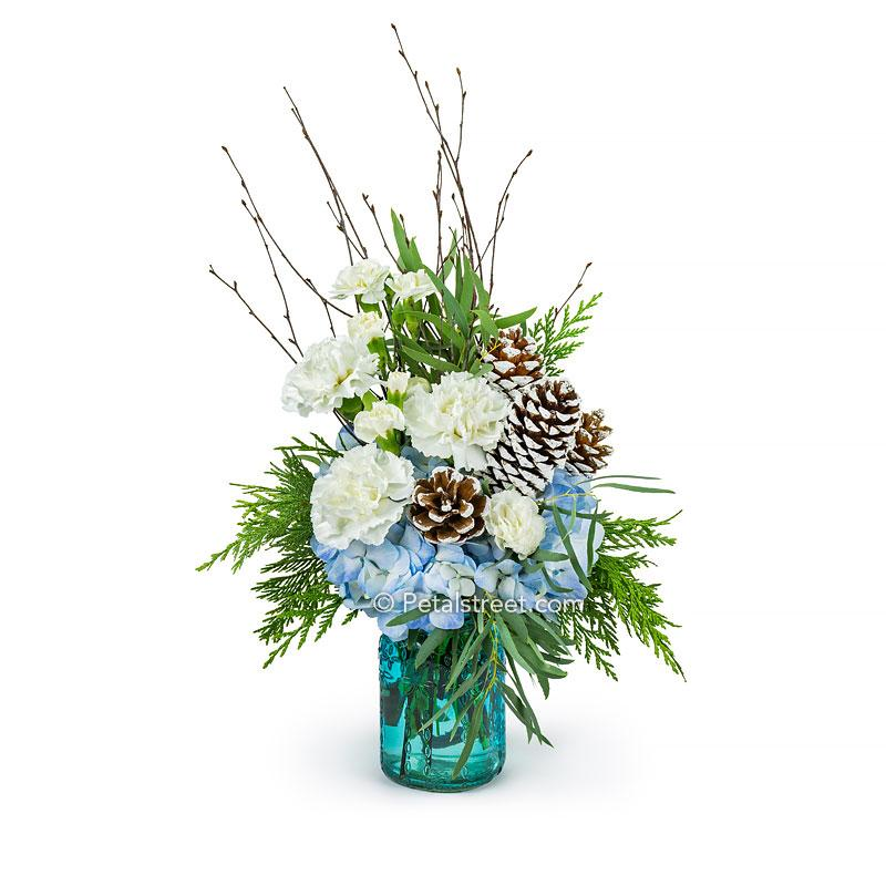 A coastal style Christmas flower arrangement with blue Hydrangea, bright white Carnations, Eucalyptus, seasonal greens, frosted Pine Cones, and Birch Twigs in a blue glass mason jar.