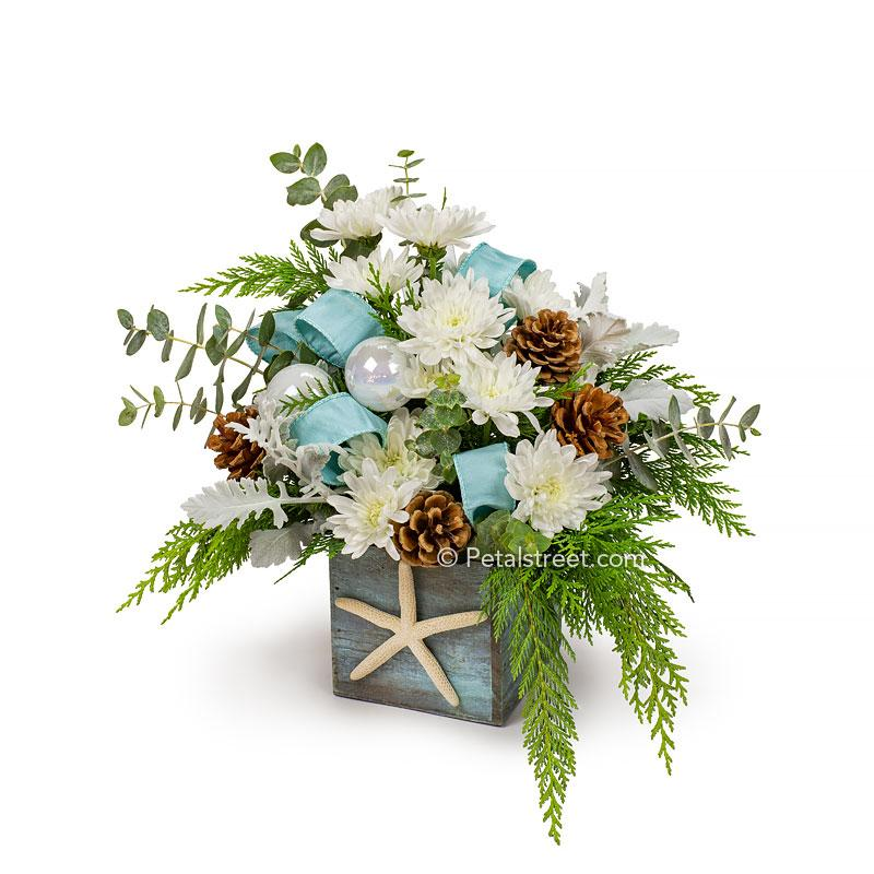 Coastal or beach theme Christmas flower arrangement with white Mums, Dusty Miller, Pine Cones, seasonal greens, Eucalyptus, white holiday ornament accents, and an aqua blue ribbon arranged in a drift wood box with a starfish adornment.