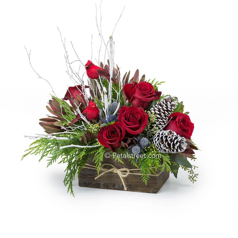 Festive wood box with red Roses, green Cedar foliage, Thistle, frosted Pine Cones, Leucadendron, Birch Branches, and red Cardinal Birds.