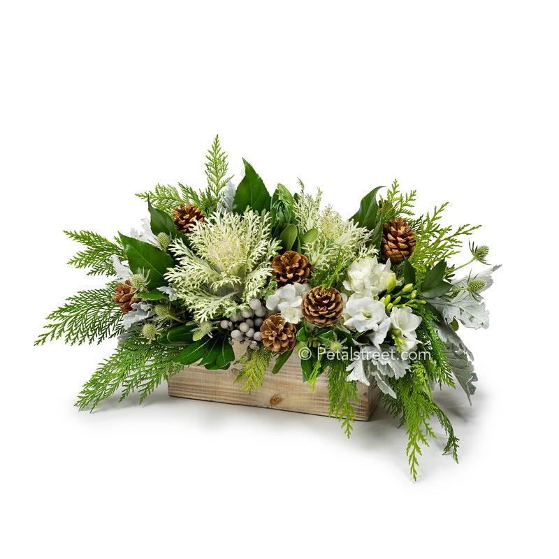 Winter holiday arrangement with green white Kale, white Hydrangea, Freesia, Dusty Miller, Brunia, Thistle, Pine Cones, Aralia Leaves, and mixed seasonal greens arranged in a wood box.