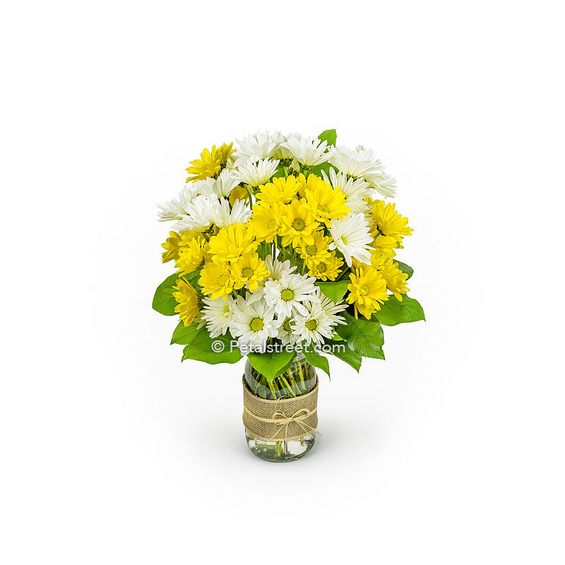 White and yellow Daisies arranged in a mason jar by Petal Street Flower Company in Point Pleasant New Jersey.