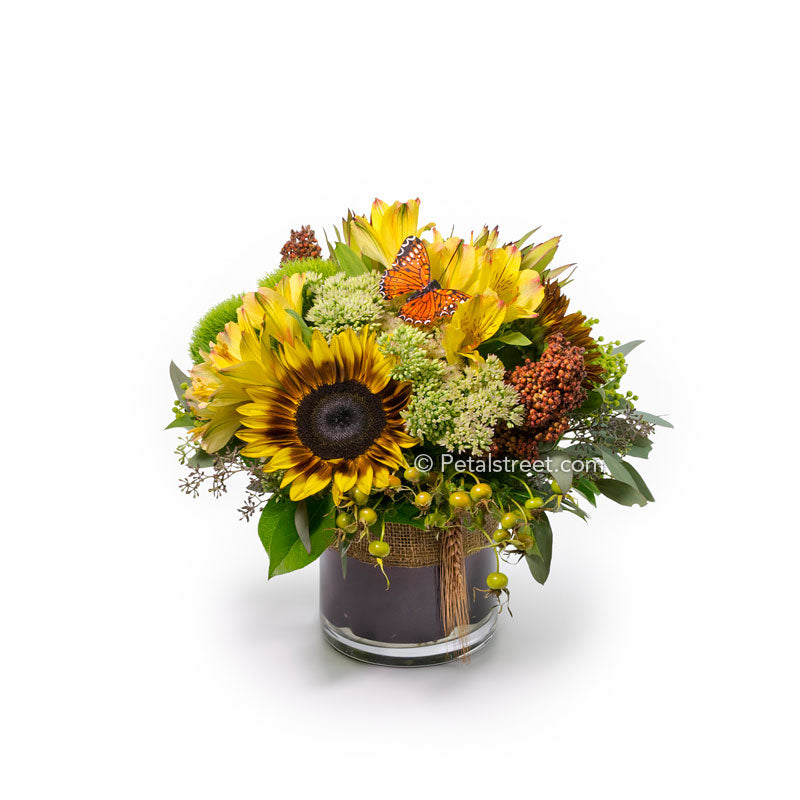 Compact cylinder vase flower arrangement with a sunflower, alstroemeria, and mixed fall season accents.