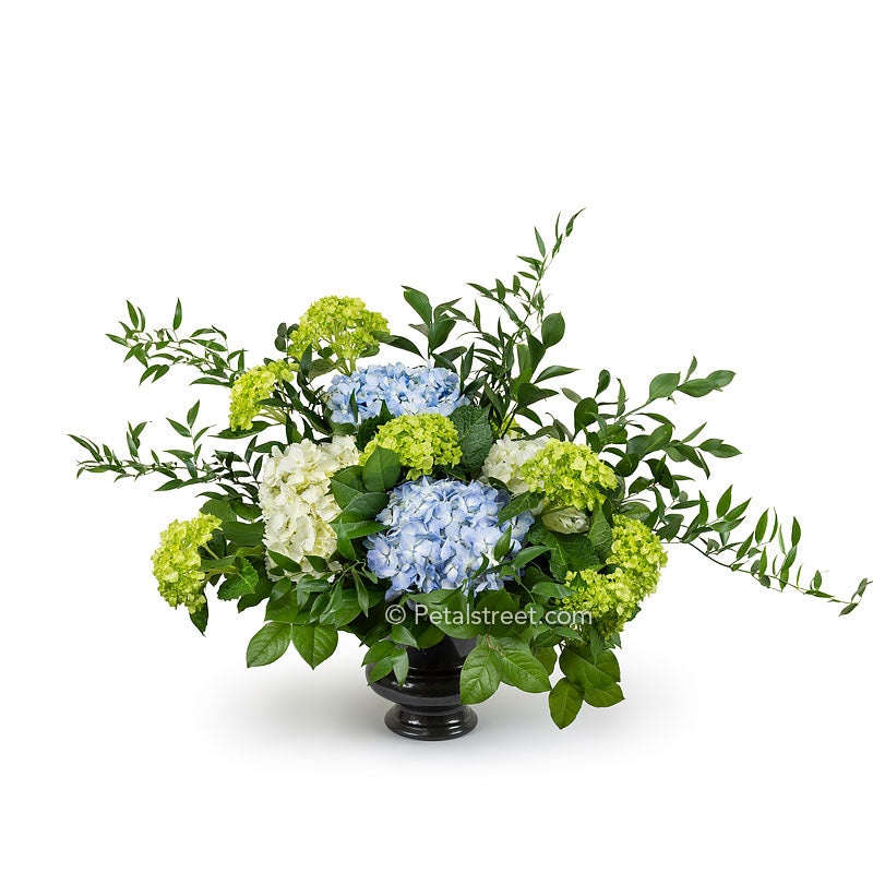 Funeral basket with white, blue, and green Hydrangea arranged with mixed foliage.