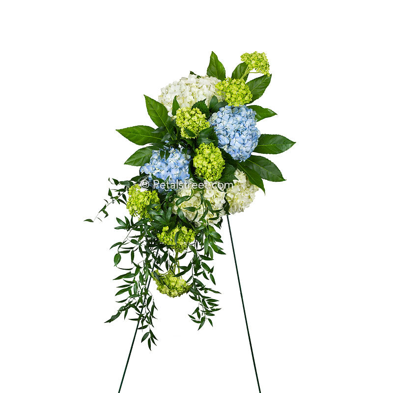 A beautifully simple standing spray made with white, blue, and green Hydrangea arranged with lush accent foliage.