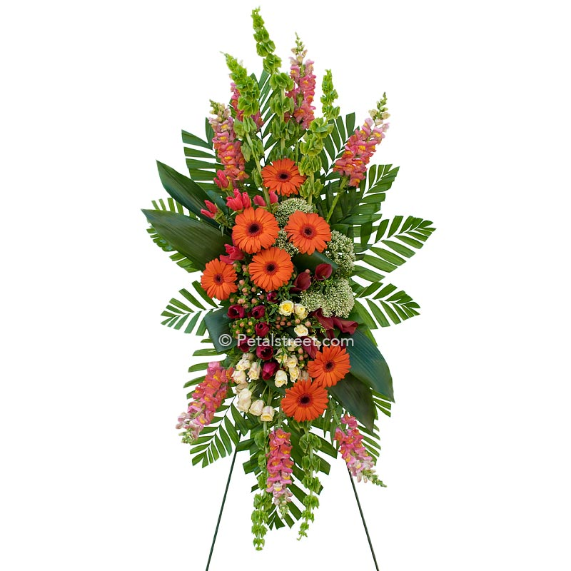 Standing spray of funeral flowers with orange Daisies and Snapdragons and mixed green accents.