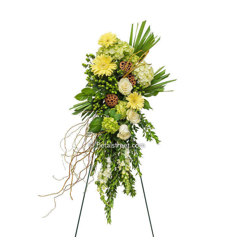 Cascading tear drop shaped funeral spray with yellow Gerbera Daisies, white Roses, green Hydrangea, Willow, and foliage.