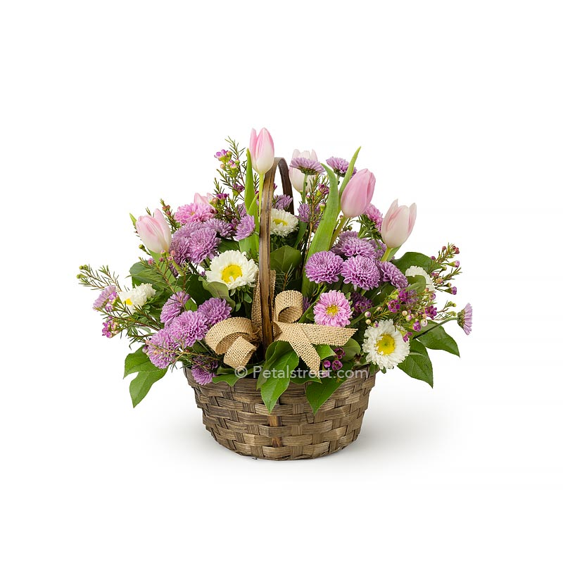 Spring basket of fresh cut pink and white flowers such as Tulips, Aster, and mini mums