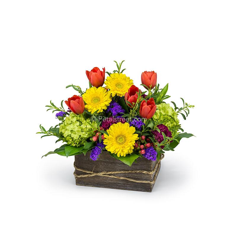 Mini Gerbera Daisies, Lisianthus, mini Hydrangea, Carnations, Tulips, Hypericum Berries, and assorted accents arranged in a wood box.